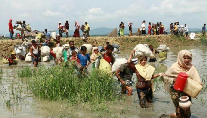 ২২৬০ রোহিঙ্গা ফেরত যাচ্ছে মিয়ানমার