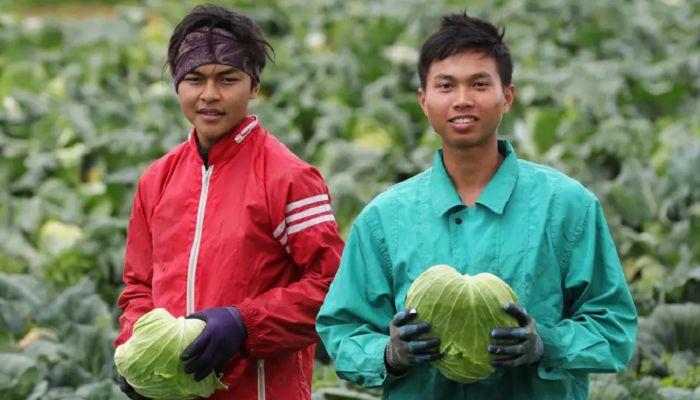 জাপানে বিদেশি শ্রমিক নেওয়া দেশের তালিকায় নেই বাংলাদেশ
