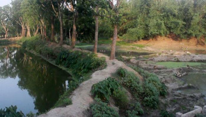 ঝিনাইদহে নদী দখল করে মাছ চাষ, বাড়ি নির্মাণ