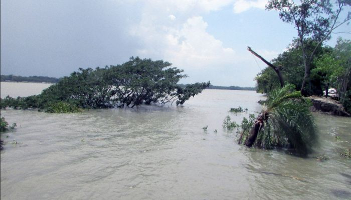 পানগুছি নদীর ভাঙনে দিশেহারা মোরেলগঞ্জবাসী