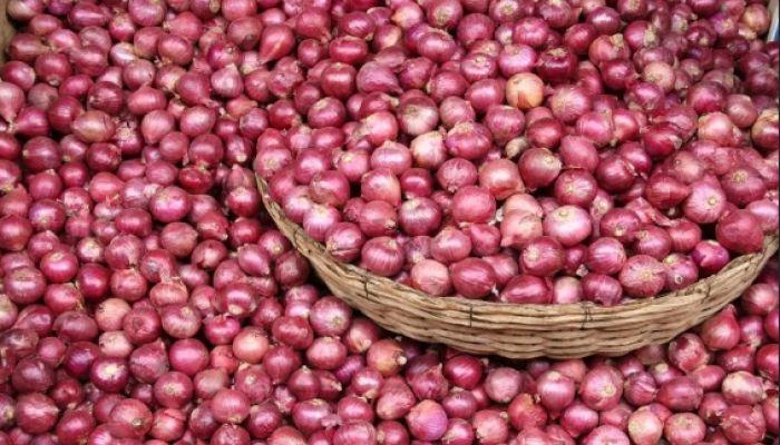 ভারতের ঘোষণার পর লাফিয়ে কমছে পেঁয়াজের দাম